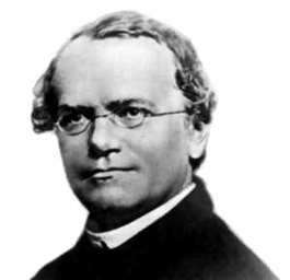 biografia de Gregorio Mendel